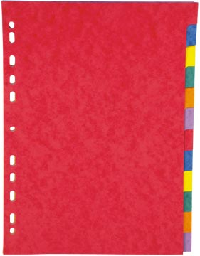 Pergamy tabbladen ft A4, 11-gaatsperforatie, stevig karton, geassorteerde kleuren, 12 tabs